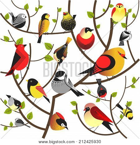 Birds sitting on tree branches. Vector colorful exotic bright bird bullfinch, sparrow or swallow and jay. Forest tree different birds flock twittering