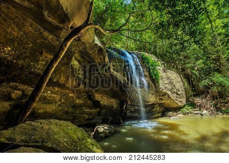 Serenity Falls and a swimming hole in Buderim Forest Park, Sunshine Coast, Queensland, Australia