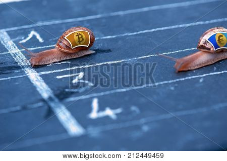 Snails Race Currency Metaphor About Bitcoin Against Euro