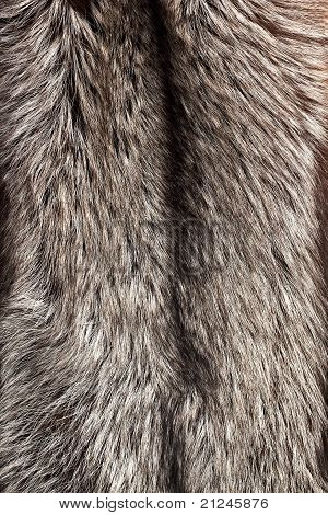 Silver fox fur texture as vertical background poster