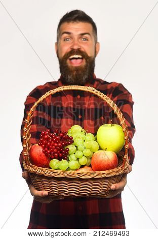 Man With Beard Holds Basket With Fruit On White Background,