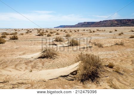 Consequences of Aral sea catastrophe. Sandy salt desert on the place of former bottom of Aral sea.