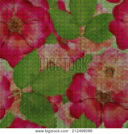 Illustration. Cross-stitch. Briar wild rose dog-roseBriar wild rose dog-rose. Texture of flowers. Seamless pattern for continuous replicate. Floral background collage.