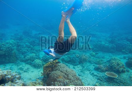 Snorkeling man dives to coral reef. Male snorkel in tropical lagoon underwater photo. Freediving in coral reef. Active summer holiday. Water sport in sea. Exploring tropical coral reef. Swimming man