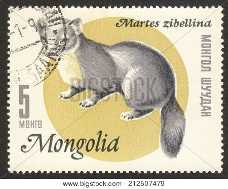 MOSCOW RUSSIA - CIRCA OCTOBER 2017: a post stamp printed in MONGOLIA shows Sable (Martes zibellina) the series