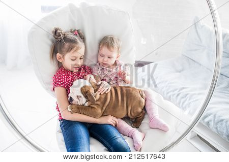 Two beautiful girls sitting in a hanging chair with a bulldog puppy.