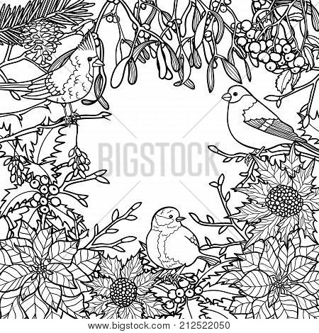 Winter Plants With Birds Pattern Nature Square Black And White Composition For Greeting Cards