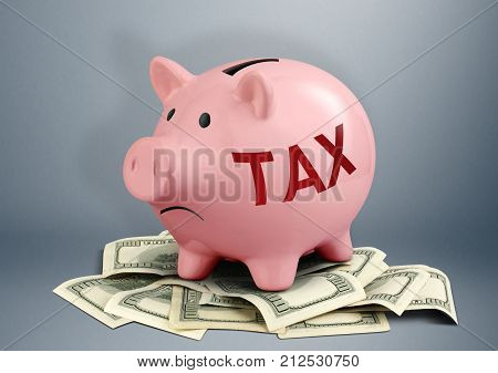 Pink Piggy bank on dollars tax and income creative concept