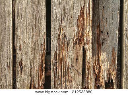 a full frame rundown wooden planks detail