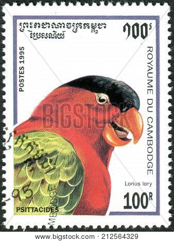CAMBODIA - CIRCA 1995: A stamp printed in Cambodia shows parrot the Black-capped Lory (Lorius lory) circa 1995