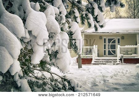 Spruce branch heavily covered with snow in front of porch of countryside house in january