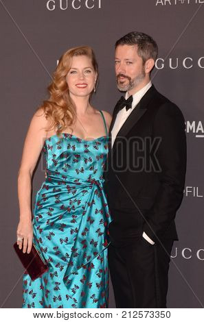 LOS ANGELES - NOV 4:  Amy Adams, Darren Le Gallo at the LACMA: Art and Film Gala at the Los Angeles County Musem of Art on November 4, 2017 in Los Angeles, CA