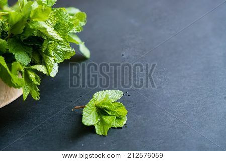 mint leaf. Green fresh mint, selective focus. Bunch of Fresh green organic mint leaf closeup. Peppermint. Natural light. Selective focus. Close up on a black background. Top view, flat lay. copy space