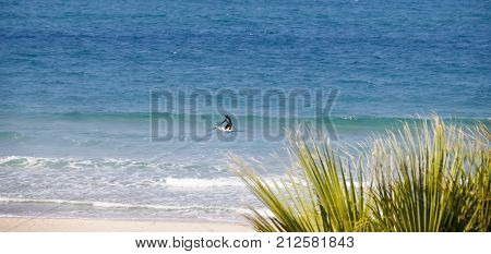 The surfer trys to stand on a board which slips on the wave of the coastal waters of the Mediterranean Sea