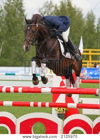 Showjumping In Russia