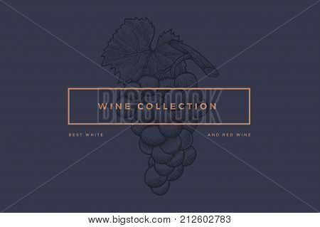 Logo template for design of wine card, booklet, menu for restaurant or bar with inscription