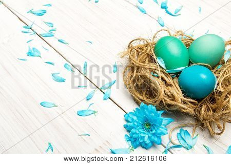 Easter background with eggs nest and catkins on wooden background copy space