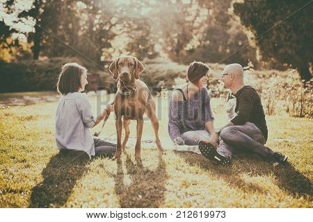 Beautiful happy family of three playing in the park with their dog. Animal lovers. Mother, father, daughter and their dog