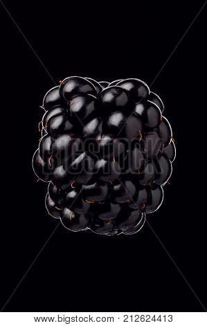 Juicy large berry of a blackberry on a black background close-up