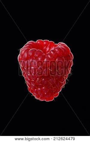 One berry of raspberries on a black background close-up