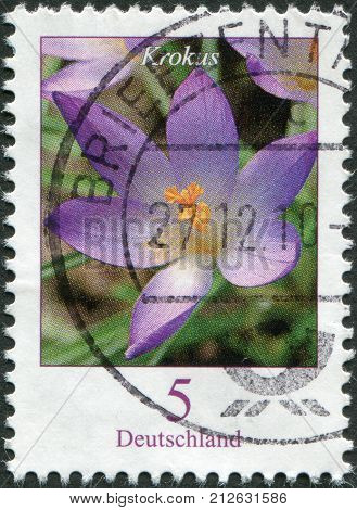 GERMANY - CIRCA 2005: A stamp printed in Germany shows a flower Crocus tommasinianus circa 2005