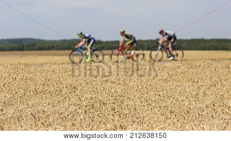 Vendeuvre-sur-Barse France - 6 July 2017: Out of focus image of three cyclists in the breakaway passing through a region of wheat fields during the stage 6 of Tour de France 2017. Selective focus on the wheat field.