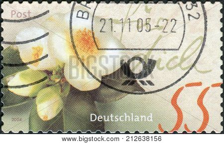 GERMANY - CIRCA 2004: Postage stamp printed in Germany shows a flowering camellia circa 2004