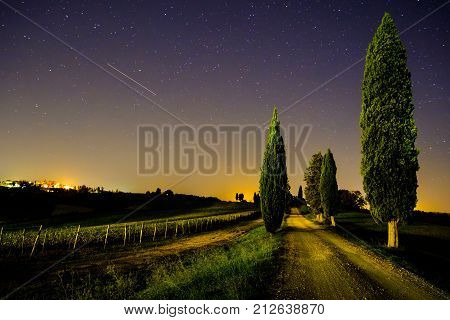 View of Tuscany vineyard and country road with shooting star in the sky