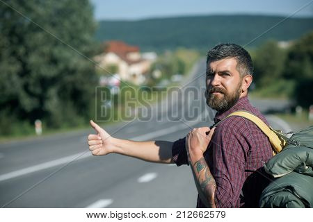 Hipster hiker show thumbs up hand gesture on sunny day. Man with backpack hitchhiking on road. Summer vacation concept. Adventure discovery wanderlust. Tourist traveler travel auto stop. poster