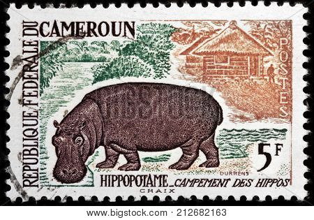 LUGA RUSSIA - OCTOBER 12 2017: A stamp printed by CAMEROON shows Hippopotamus or Hippo - a large mostly herbivorous mammal in sub-Saharan Africa circa 1962