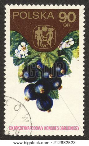 MOSCOW RUSSIA - CIRCA OCTOBER 2017: a post stamp printed in POLAND shows black currants the series