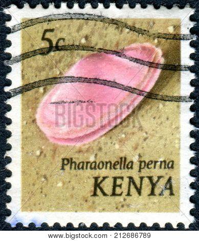 KENYA - CIRCA 1971: A stamp printed in Kenya shows a molluscs Morning Pink (Pharaonella perna) circa 1971