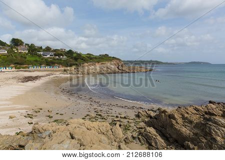 Swanpool beach and coast Falmouth Cornwall England UK located between between Maenporth and Gyllyngvase