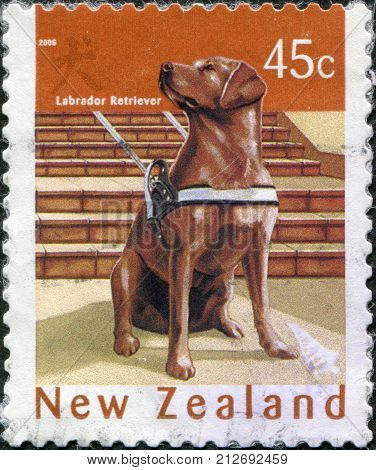 NEW ZEALAND - CIRCA 2006: Postage stamps printed in New Zealand is dedicated to New Year 2006 (Year of the Dog) shows a Labrador retriever circa 2006