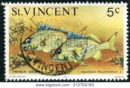 SAINT VINCENT AND THE GRENADINES - CIRCA 1977: Postage stamp Saint Vincent and the Grenadines shows a fish the French grunt (Haemulon flavolineatum) circa 1977