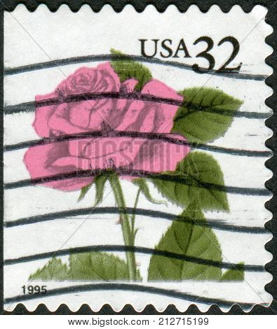 Usa - Circa 1995: Postage Stamp Printed In The Usa, Shows Flower Rose, Circa 1995