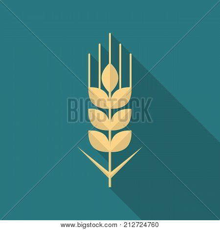 Wheat grain icon with long shadow. Flat design style. Wheat grain simple silhouette. Modern minimalist icon in stylish colors. Web site page and mobile app design vector element.