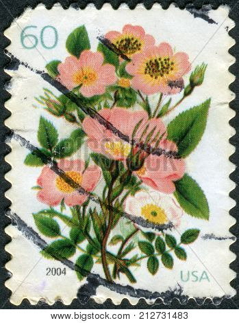USA - CIRCA 2004: Postage stamps printed in USA shows Five Varieties of Pink Roses circa 2004