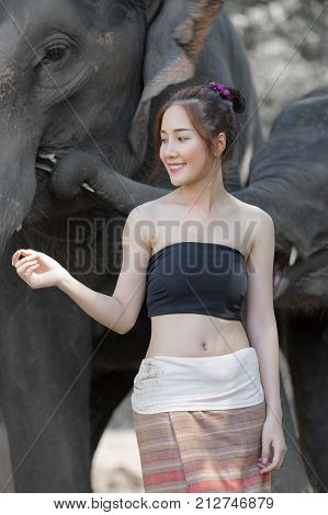 Elephant and mahout in village Surin Thailandan elephant is like a family.