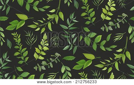 Seamless pattern of Eucalyptus palm fern different tree foliage natural branches green leaves herbs tropical plant hand drawn watercolor Vector fresh beauty rustic eco friendly background on gray