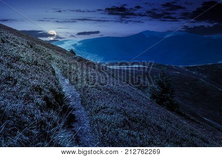 path though mountain hills and ridge at night in full moon light. beautiful scenery with spruce tree on a in fine weather on late summer