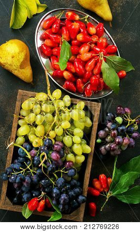 Autumn Fruits