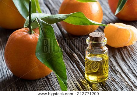 A bottle of tangerine essential oil on a wooden table with whole tangerines and tangerine wedges in the background