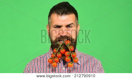 Man With Beard Holds Vegetables In Mouth On Green Background.