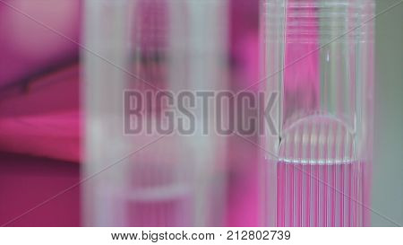 Medical tubes with pink liquid. tubes with pink solutions in a biochemistry lab. Perfume distillery glass tube. Test tubes filled with blood and glass dropper on pink blurred background, close up. Measuring tube with pink sample. Selective focus.