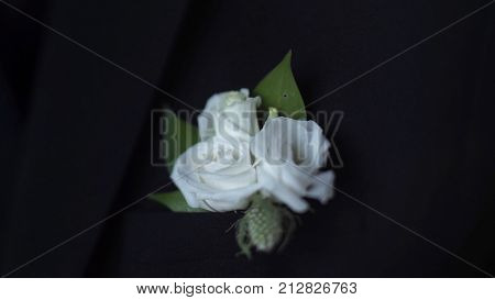 White flower in his jacket pocket closeup. Groom boutonniere adjusts his hand in a jacket pocket. Stylish and classic groom and the details of his outfit: blue jacket, bow tie, white shirt HD