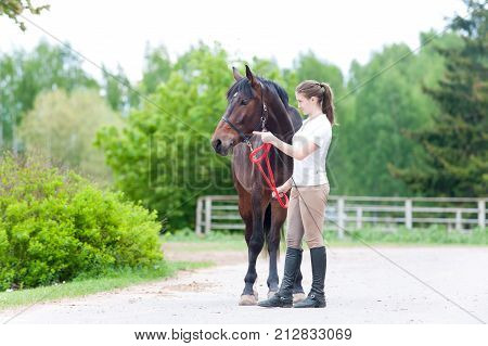 Equestrian owner teenage girl pointing with finger to her horse how to training in correct way. Vibrant colored outdoors horizontal image.
