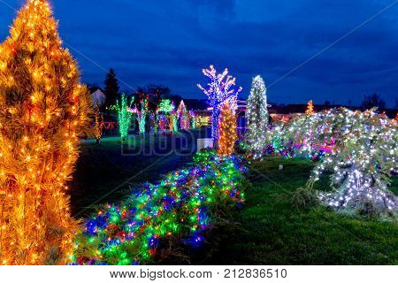 Village In Colorful Christmas Lights