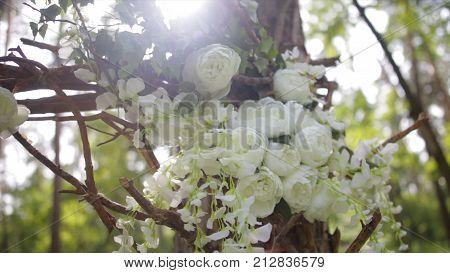 Lovely White Bush Roses. Ornamental White Flowers On Bright Sun. Tender Roses In Garden.beautiful Ro