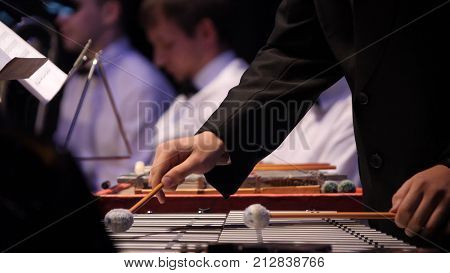 Close up of the musician playing on xylophone. Xylophone, music and chromatic instrument concept closeup on wooden bars with four mallets in human hands, performer in black dress, glockenspiel, orchestra concert, art of music.